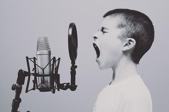高音アーティストの曲だけど声が低い人でも歌える曲